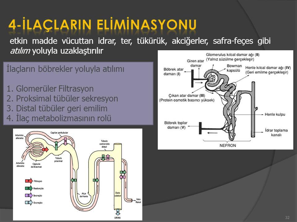 etkin madde vücuttan idrar, ter, tükürük, akciğerler, safra-feçes gibi atılım yoluyla uzaklaştırılır İlaçların böbrekler yoluyla atılımı 1. Glomerüler