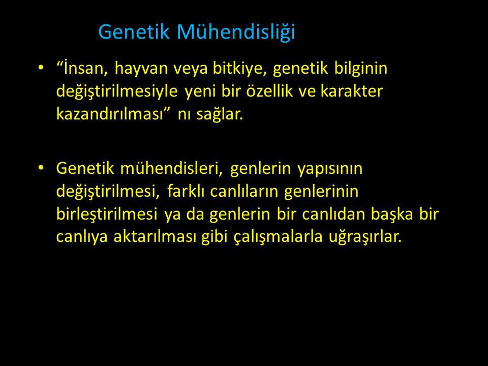 """Genetik Mühendisliği • """"İnsan, hayvan veya bitkiye, genetik bilginin değiştirilmesiyle yeni bir özellik ve karakter kazandırılması"""" nı sağlar. • Genet"""