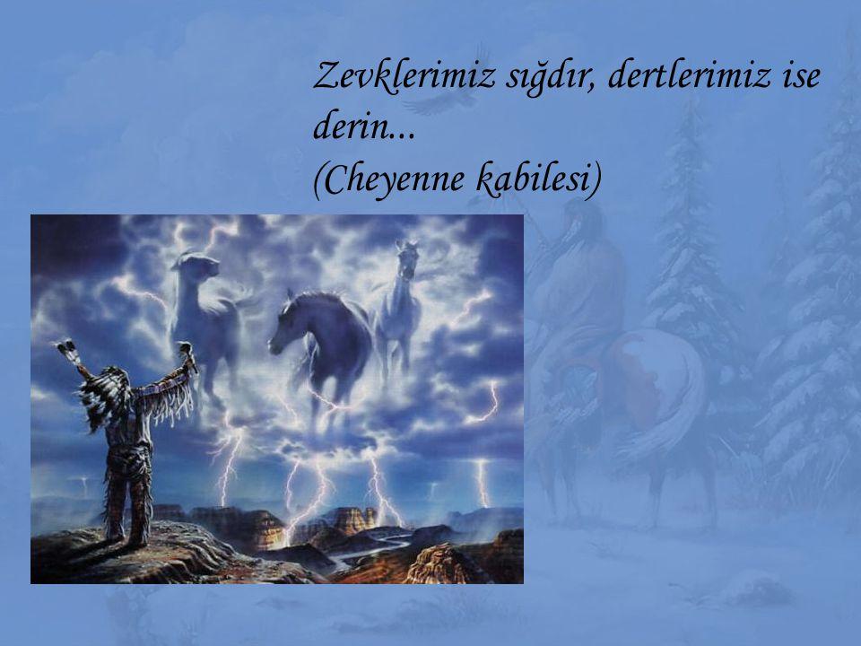 Zevklerimiz sığdır, dertlerimiz ise derin... (Cheyenne kabilesi)