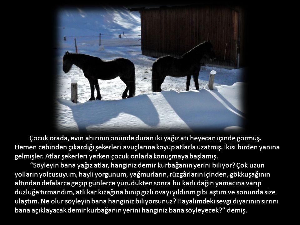 Çocuk orada, evin ahırının önünde duran iki yağız atı heyecan içinde görmüş.