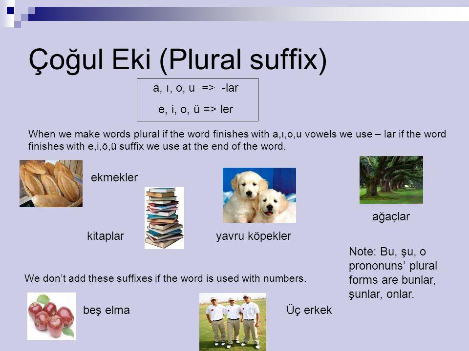 Çoğul Eki (Plural suffix) a, ı, o, u => -lar e, i, o, ü => ler When we make words plural if the word finishes with a,ı,o,u vowels we use – lar if the