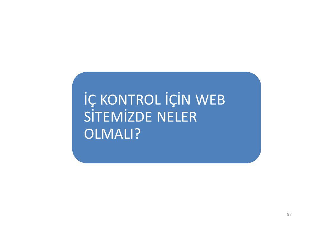 İÇ KONTROL İÇİN WEB SİTEMİZDE NELER OLMALI? 87