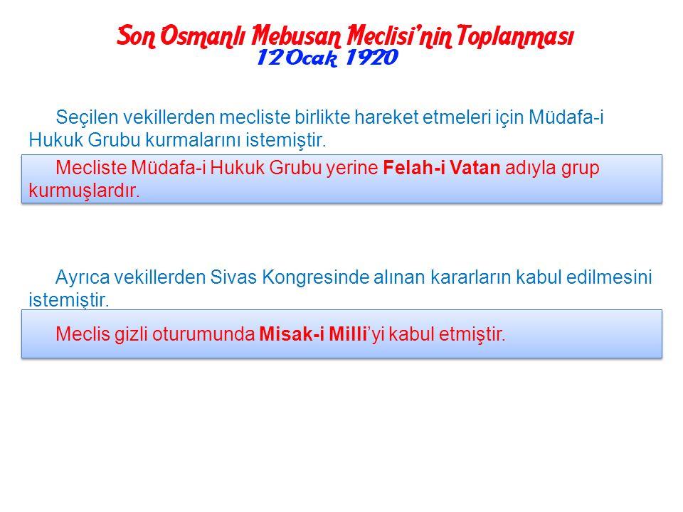İstanbul'da toplanacak olan Meclis için tüm yurtta serbestçe seçimler yapıldı ve mebuslar belirlendi. İtilaf Devletleri seçimleri Saltanat yanlılarını