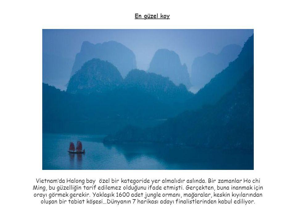 En güzel koy Vietnam'da Halong bay özel bir kategoride yer almalıdır aslında. Bir zamanlar Ho chi Ming, bu güzelliğin tarif edilemez olduğunu ifade et