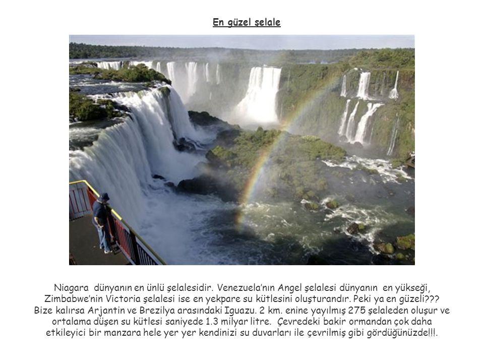 En güzel şelale Niagara dünyanın en ünlü şelalesidir. Venezuela'nın Angel şelalesi dünyanın en yükseği, Zimbabwe'nin Victoria şelalesi ise en yekpare