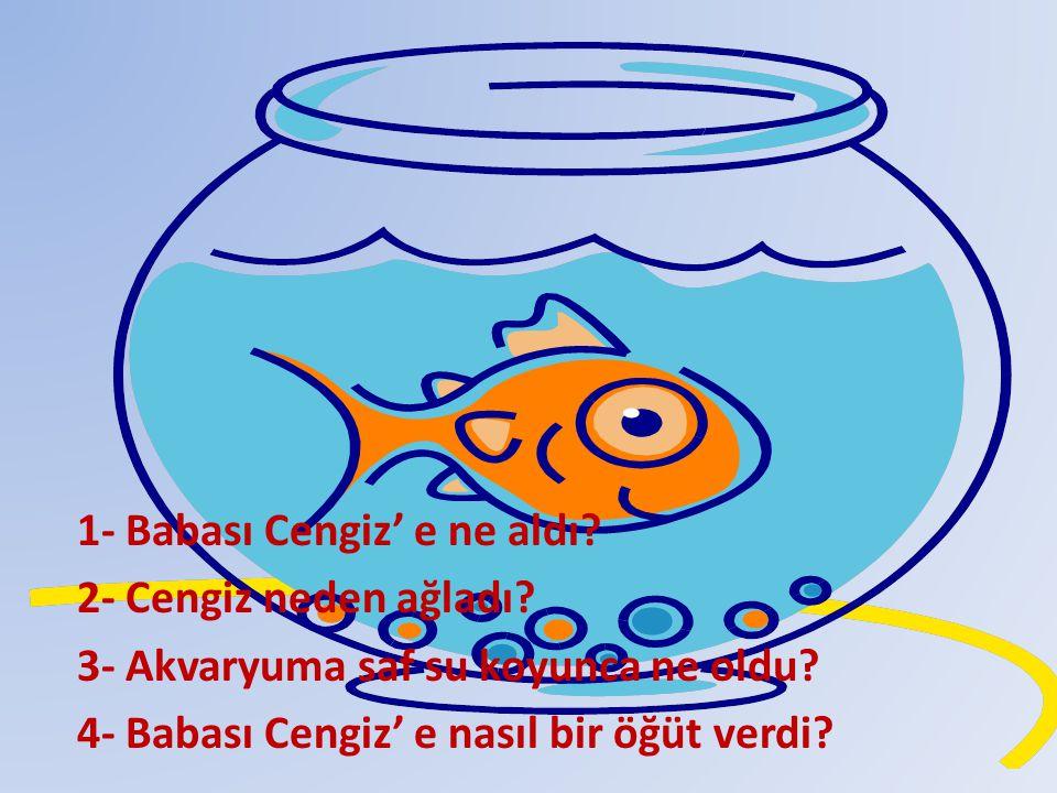 1- Babası Cengiz' e ne aldı? 2- Cengiz neden ağladı? 3- Akvaryuma saf su koyunca ne oldu? 4- Babası Cengiz' e nasıl bir öğüt verdi?