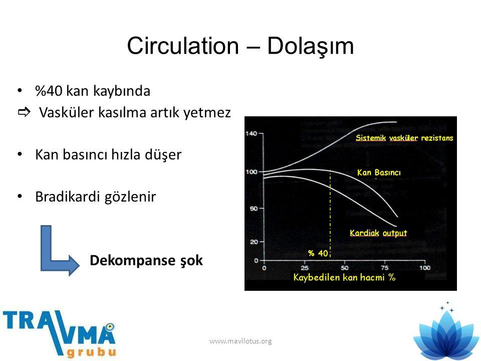 Circulation – Dolaşım • %40 kan kaybında  Vasküler kasılma artık yetmez • Kan basıncı hızla düşer • Bradikardi gözlenir Dekompanse şok www.mavilotus.