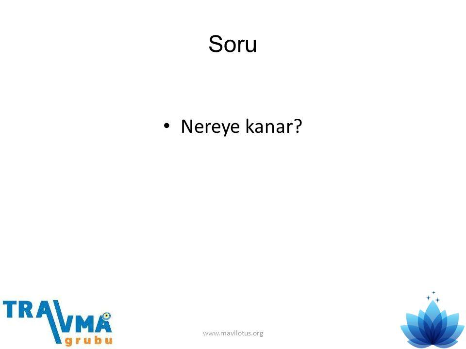 Soru • Nereye kanar? www.mavilotus.org