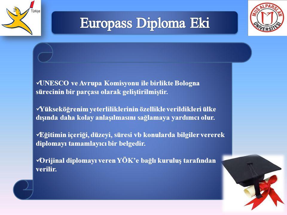  UNESCO ve Avrupa Komisyonu ile birlikte Bologna sürecinin bir parçası olarak geliştirilmiştir.  Yükseköğrenim yeterliliklerinin özellikle verildikl