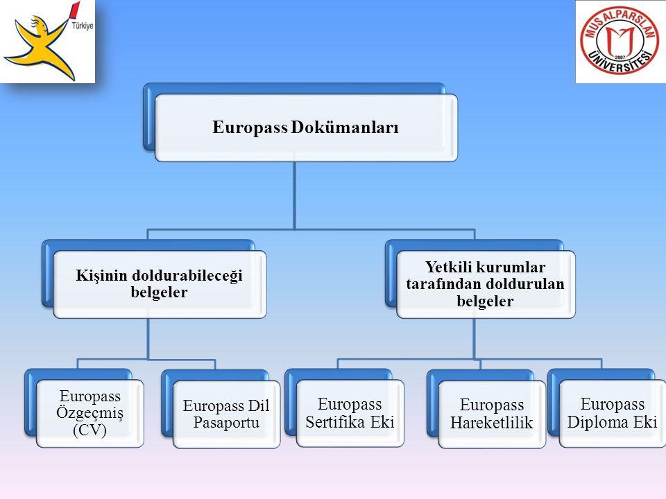 Europass Dokümanları Kişinin doldurabileceği belgeler Europass Özgeçmiş (CV) Europass Dil Pasaportu Yetkili kurumlar tarafından doldurulan belgeler Eu