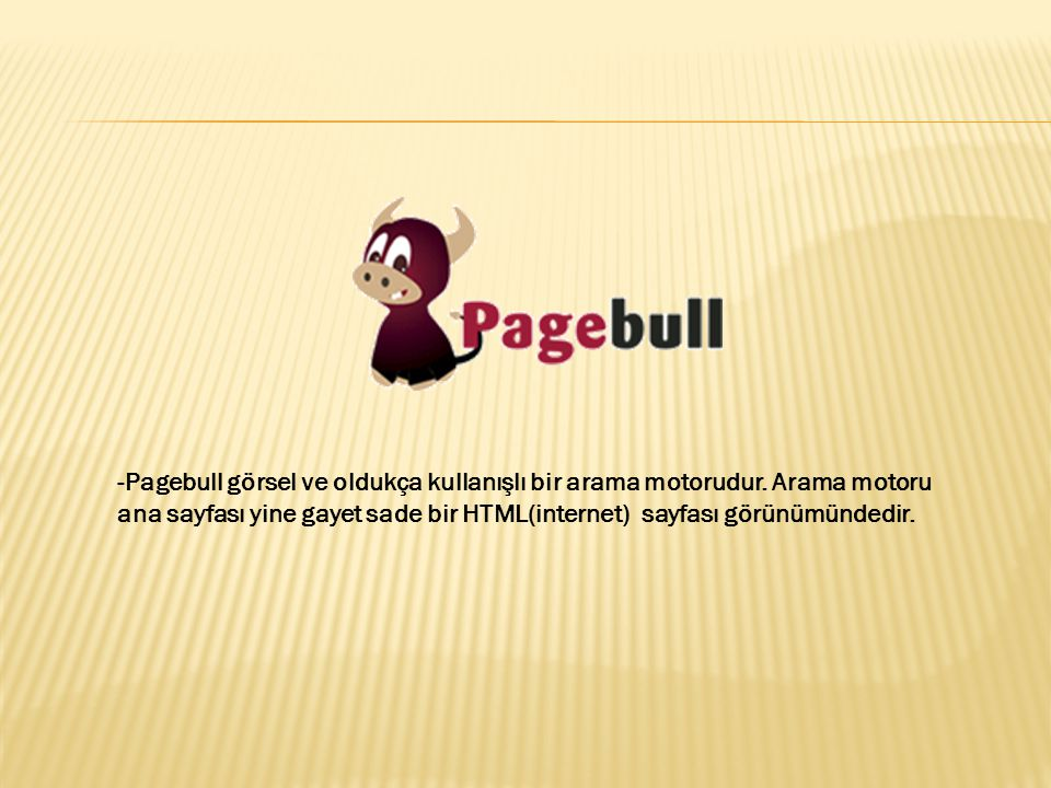 -Pagebull görsel ve oldukça kullanışlı bir arama motorudur. Arama motoru ana sayfası yine gayet sade bir HTML(internet) sayfası görünümündedir.