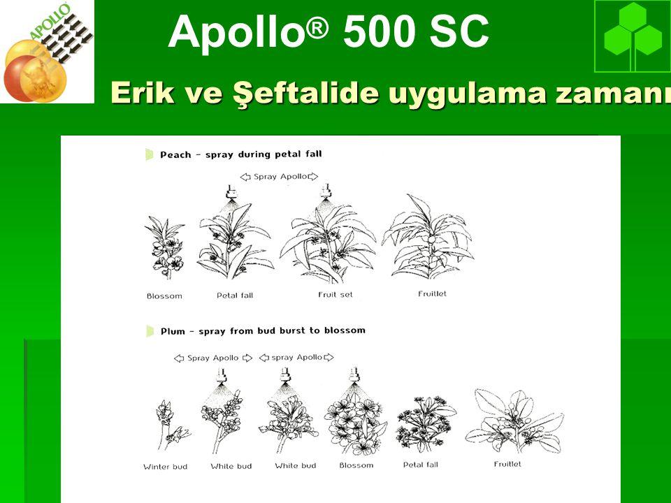 Erik ve Şeftalide uygulama zamanı Apollo ® 500 SC