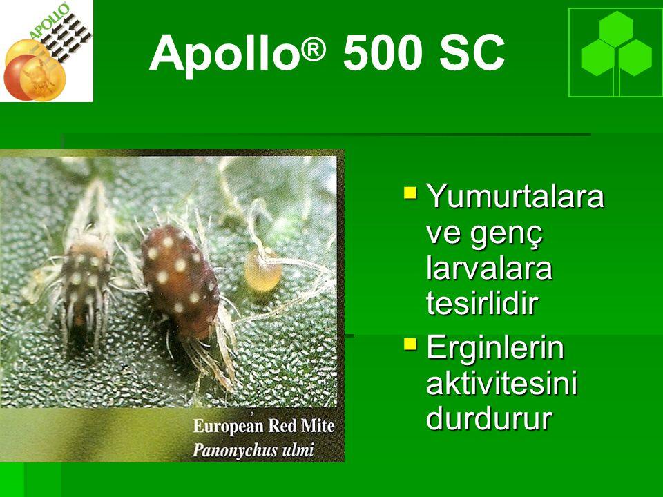  Yumurtalara ve genç larvalara tesirlidir  Erginlerin aktivitesini durdurur Apollo ® 500 SC