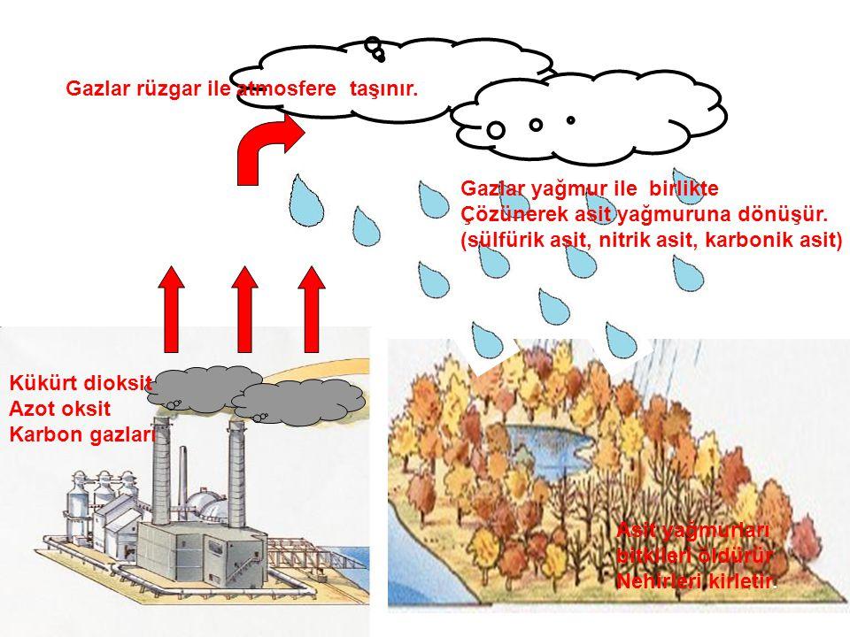 Gazlar rüzgar ile atmosfere taşınır. Gazlar yağmur ile birlikte Çözünerek asit yağmuruna dönüşür. (sülfürik asit, nitrik asit, karbonik asit) Kükürt d