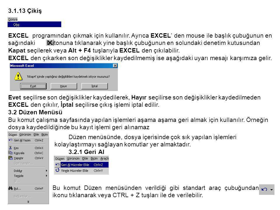 3.1.13 Çikiş EXCEL programından çıkmak için kullanılır.