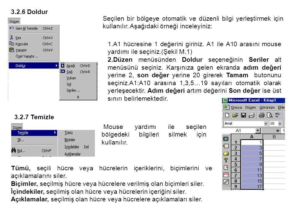 Seçilen bir bölgeye otomatik ve düzenli bilgi yerleştirmek için kullanılır.
