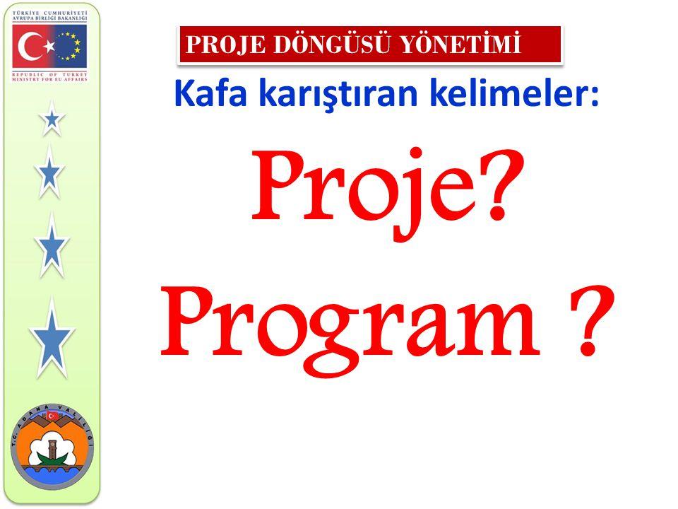 Kafa karıştıran kelimeler: Proje? Program ?