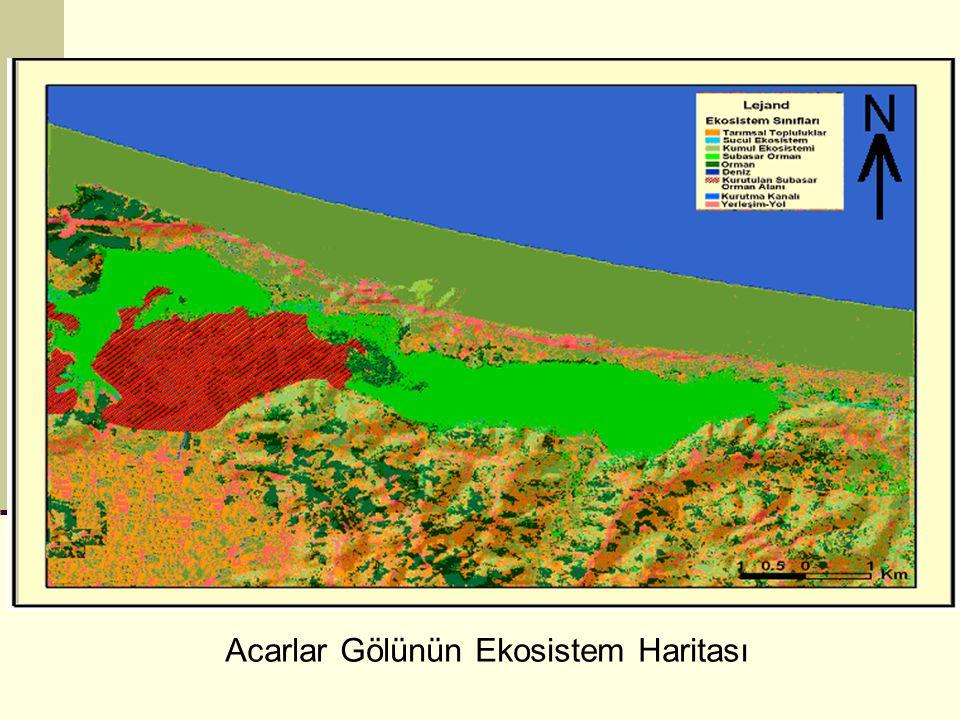 Acarlar Gölünün Ekosistem Haritası