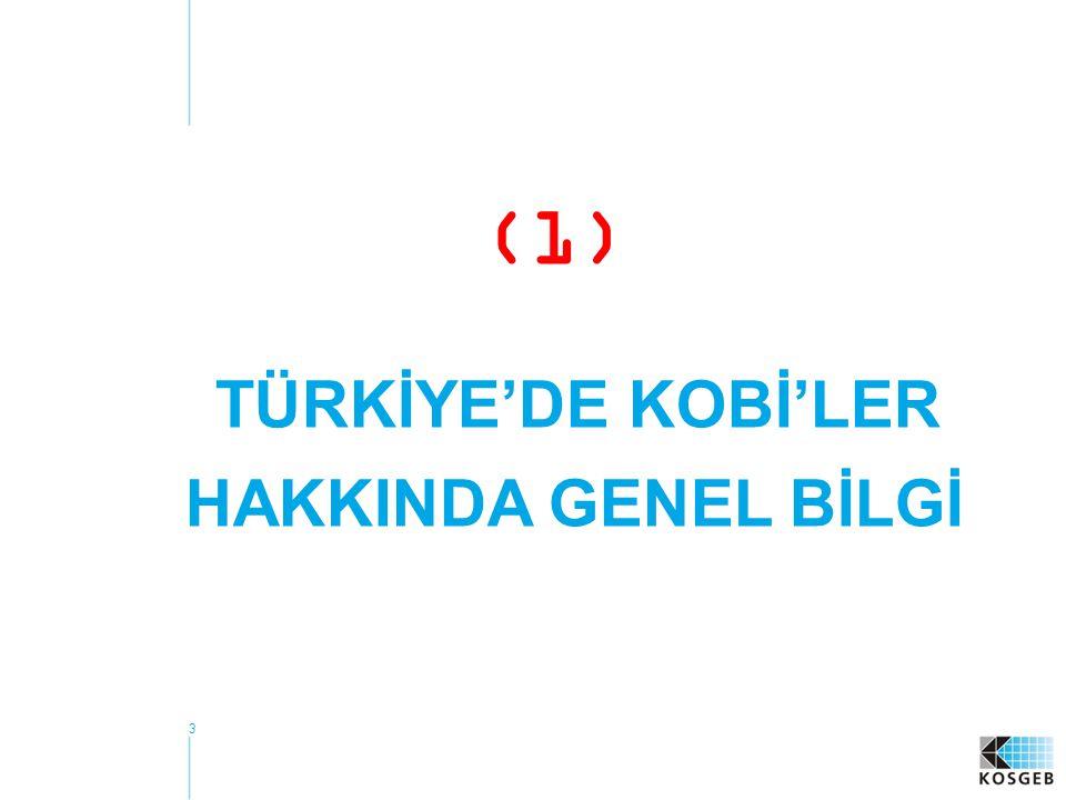 3 (1) TÜRKİYE'DE KOBİ'LER HAKKINDA GENEL BİLGİ