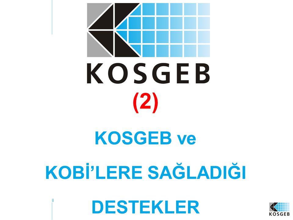 8 (2) KOSGEB ve KOBİ'LERE SAĞLADIĞI DESTEKLER