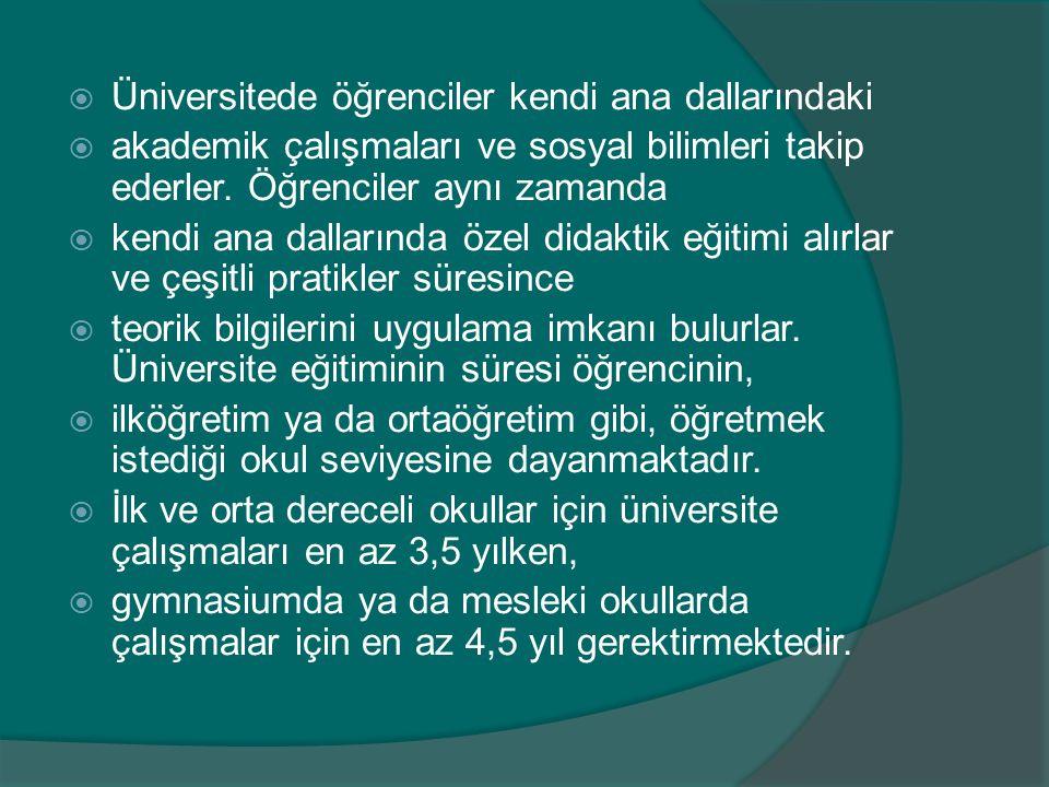  Üniversitede öğrenciler kendi ana dallarındaki  akademik çalışmaları ve sosyal bilimleri takip ederler. Öğrenciler aynı zamanda  kendi ana dalları