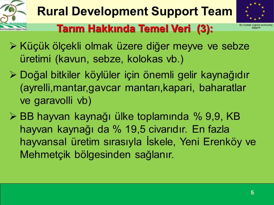 Rural Development Support Team EU Turkish Cypriot community support 555  Küçük ölçekli olmak üzere diğer meyve ve sebze üretimi (kavun, sebze, koloka