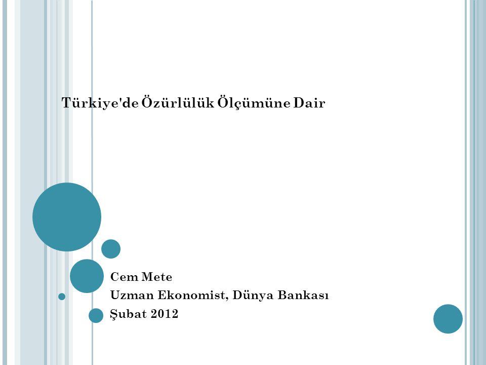 Türkiye de Özürlülük Ölçümüne Dair Cem Mete Uzman Ekonomist, Dünya Bankası Şubat 2012