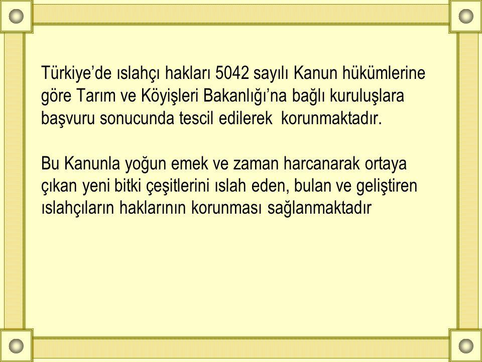 Türkiye'de ıslahçı hakları 5042 sayılı Kanun hükümlerine göre Tarım ve Köyişleri Bakanlığı'na bağlı kuruluşlara başvuru sonucunda tescil edilerek koru