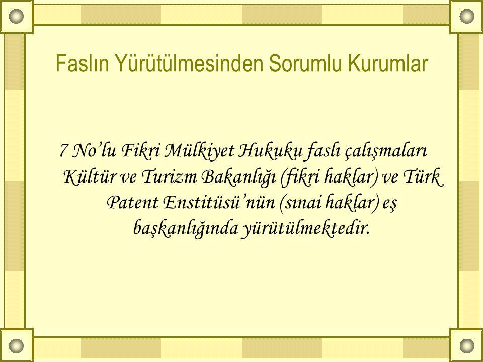 Faslın Yürütülmesinden Sorumlu Kurumlar 7 No'lu Fikri Mülkiyet Hukuku faslı çalışmaları Kültür ve Turizm Bakanlığı (fikri haklar) ve Türk Patent Ensti