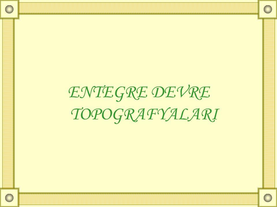 ENTEGRE DEVRE TOPOGRAFYALARI