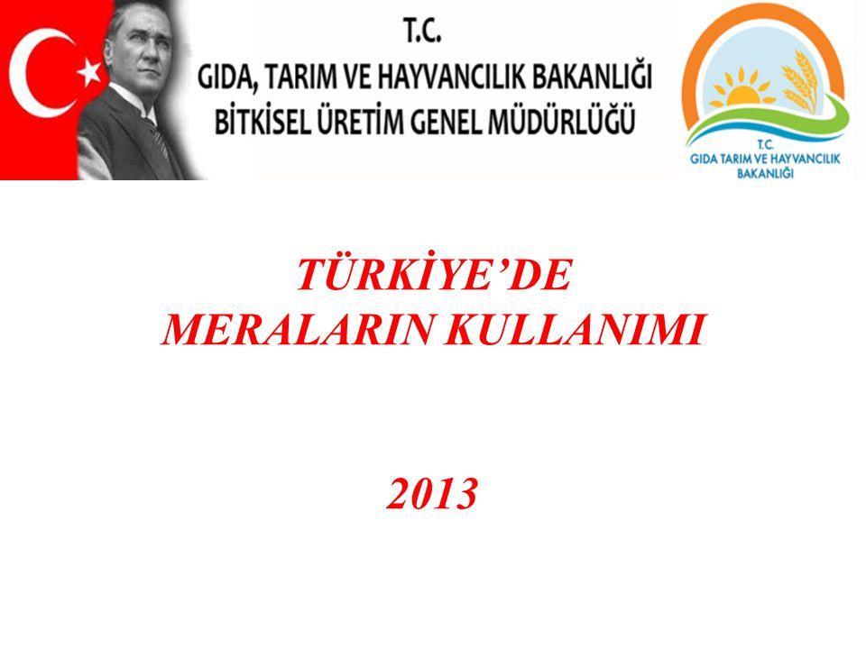 Sunum Planı •Mera Yönetiminin Önemi, •Dünyadaki Mera, Yaylak ve Kışlak Uygulamaları, •Türkiye'deki Mera Kanunu Uygulamaları, •Projeler; 1- Mera Islahı ve Amenajmanı, 2- Altın Bayrak, 3- Mera Bilgi Sistemi ( MERBIS ), 4- Uluslararası Mera ve Havza Yönetimini Geliştirme.