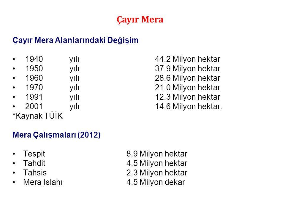 Çayır Mera Alanlarındaki Değişim • 1940 yılı44.2 Milyon hektar • 1950yılı 37.9 Milyon hektar • 1960yılı 28.6 Milyon hektar • 1970yılı 21.0 Milyon hekt