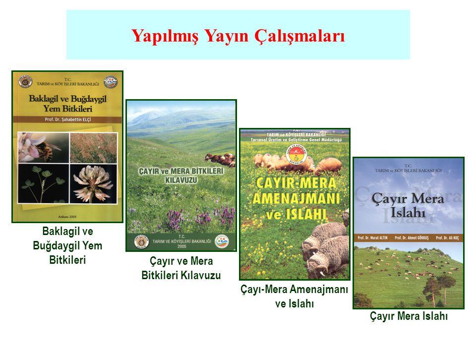 Baklagil ve Buğdaygil Yem Bitkileri Çayır ve Mera Bitkileri Kılavuzu Çayı-Mera Amenajmanı ve Islahı Çayır Mera Islahı Yapılmış Yayın Çalışmaları