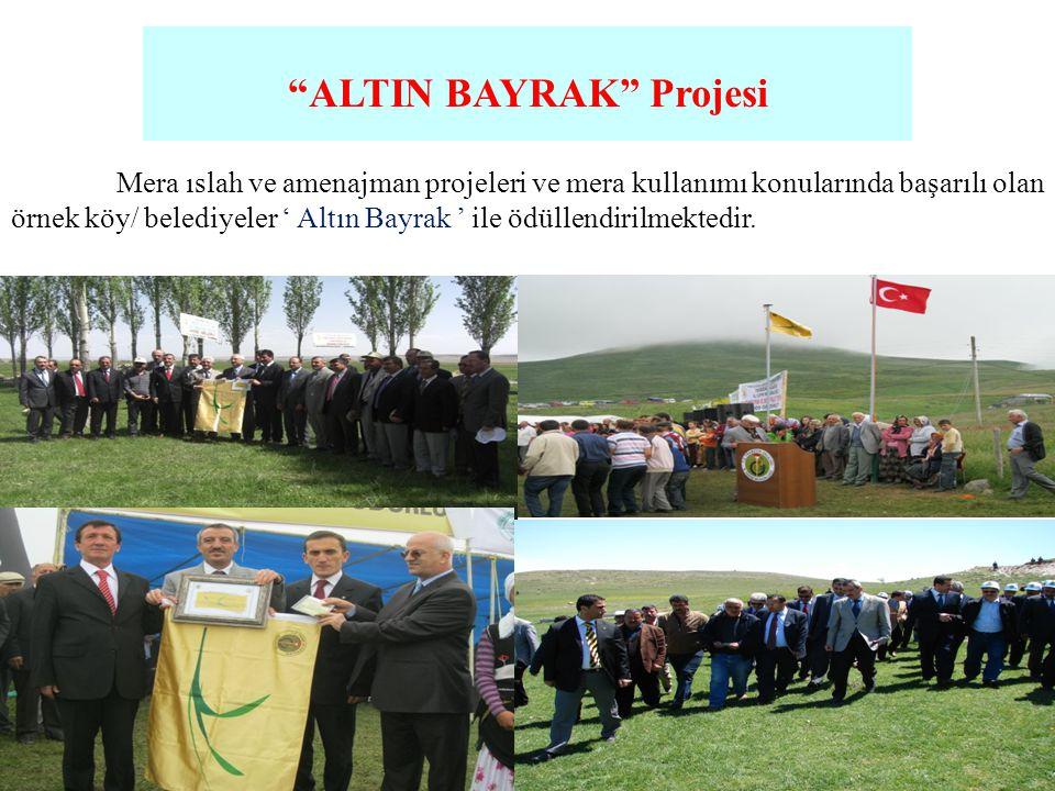 """""""ALTIN BAYRAK"""" Projesi Mera ıslah ve amenajman projeleri ve mera kullanımı konularında başarılı olan örnek köy/ belediyeler ' Altın Bayrak ' ile ödüll"""
