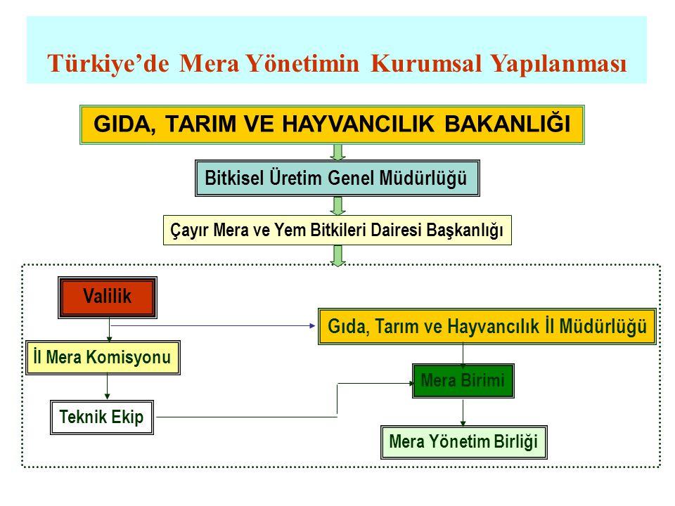 Türkiye'de Mera Yönetimin Kurumsal Yapılanması Bitkisel Üretim Genel Müdürlüğü Çayır Mera ve Yem Bitkileri Dairesi Başkanlığı Valilik Gıda, Tarım ve H