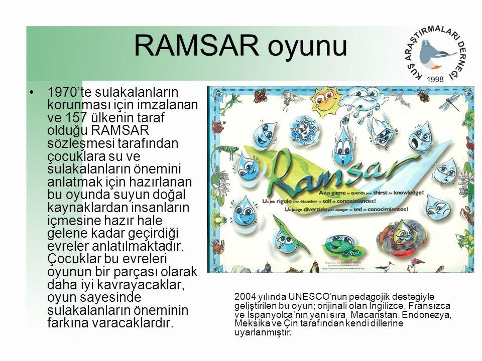 RAMSAR oyunu •1970'te sulakalanların korunması için imzalanan ve 157 ülkenin taraf olduğu RAMSAR sözleşmesi tarafından çocuklara su ve sulakalanların önemini anlatmak için hazırlanan bu oyunda suyun doğal kaynaklardan insanların içmesine hazır hale gelene kadar geçirdiği evreler anlatılmaktadır.
