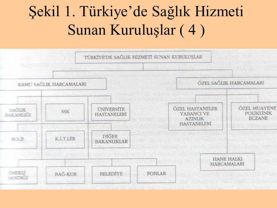 Şekil 1. Türkiye'de Sağlık Hizmeti Sunan Kuruluşlar ( 4 )