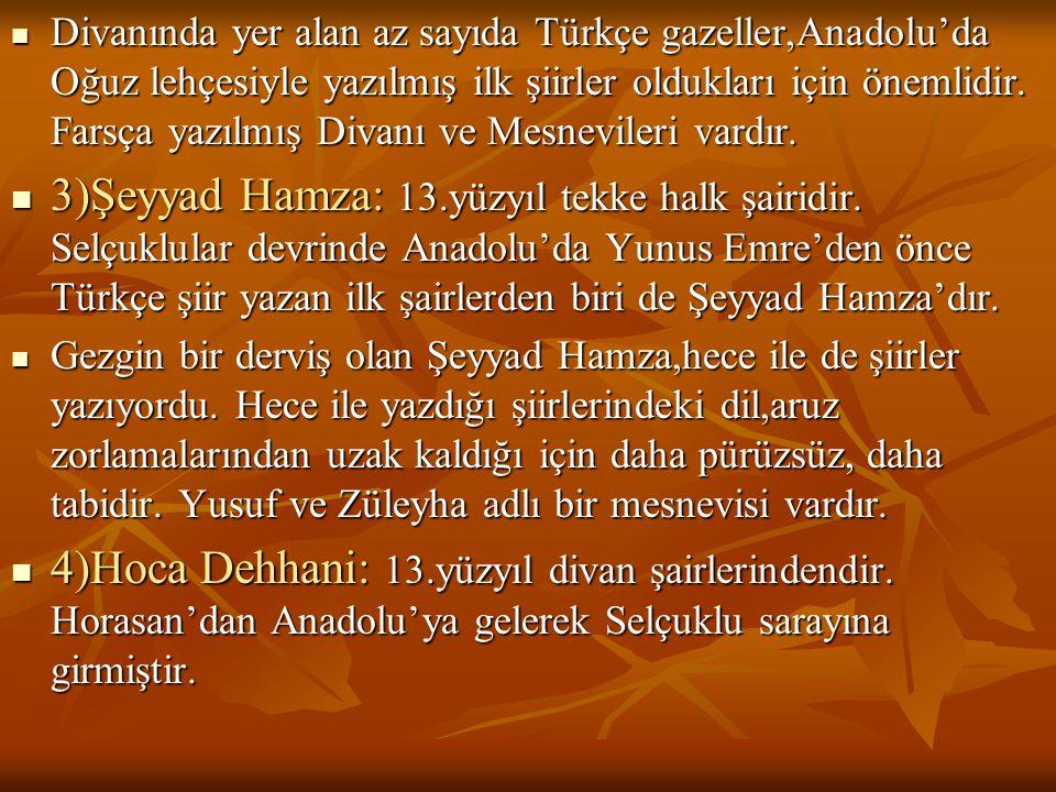  Divanında yer alan az sayıda Türkçe gazeller,Anadolu'da Oğuz lehçesiyle yazılmış ilk şiirler oldukları için önemlidir. Farsça yazılmış Divanı ve Mes