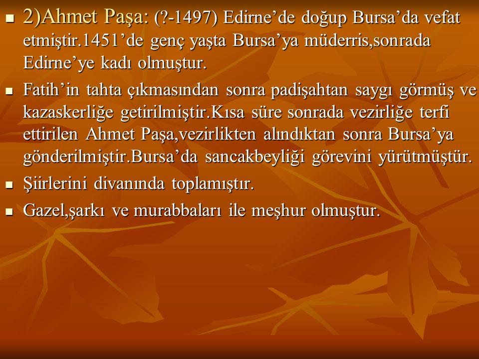  2)Ahmet Paşa: (?-1497) Edirne'de doğup Bursa'da vefat etmiştir.1451'de genç yaşta Bursa'ya müderris,sonrada Edirne'ye kadı olmuştur.  Fatih'in taht