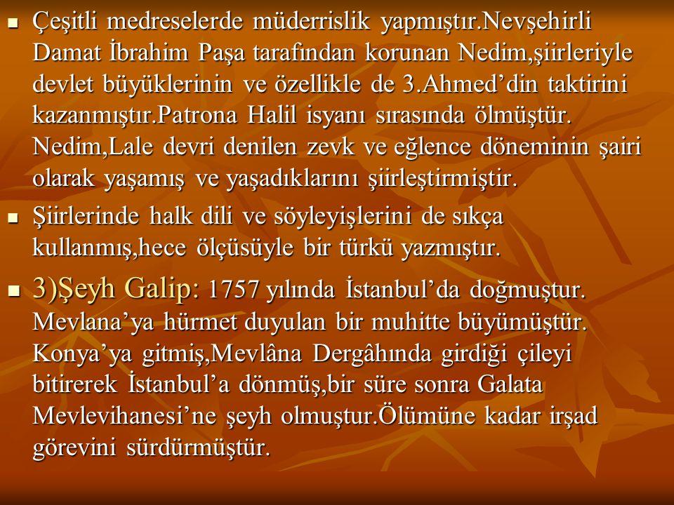 Çeşitli medreselerde müderrislik yapmıştır.Nevşehirli Damat İbrahim Paşa tarafından korunan Nedim,şiirleriyle devlet büyüklerinin ve özellikle de 3.