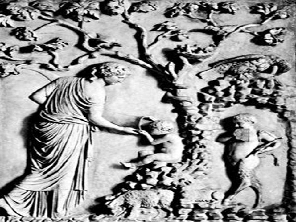 MİTLER NASIL DOĞAR MİTLER NASIL DOĞAR Bu mesele üzerinde ilk fikir yürüten zat Evhemeros adındaki Yunan filozofudur.