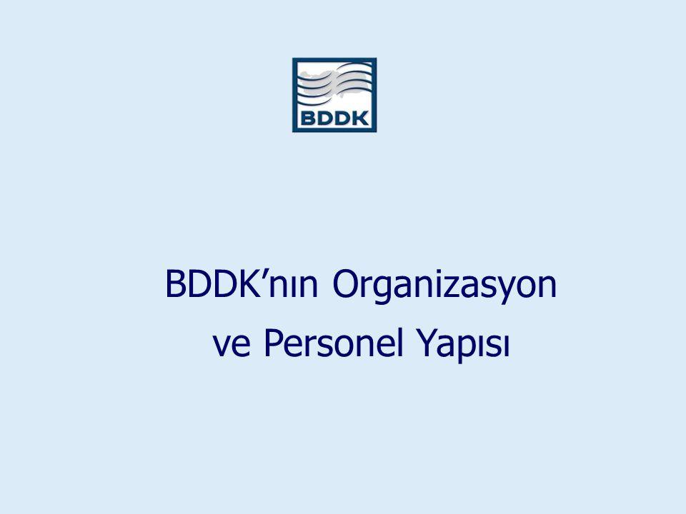 BDDK'nın Organizasyon ve Personel Yapısı