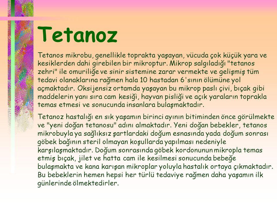  Tetanoz Tetanos mikrobu, genellikle toprakta yaşayan, vücuda çok küçük yara ve kesiklerden dahi girebilen bir mikroptur. Mikrop salgıladığı