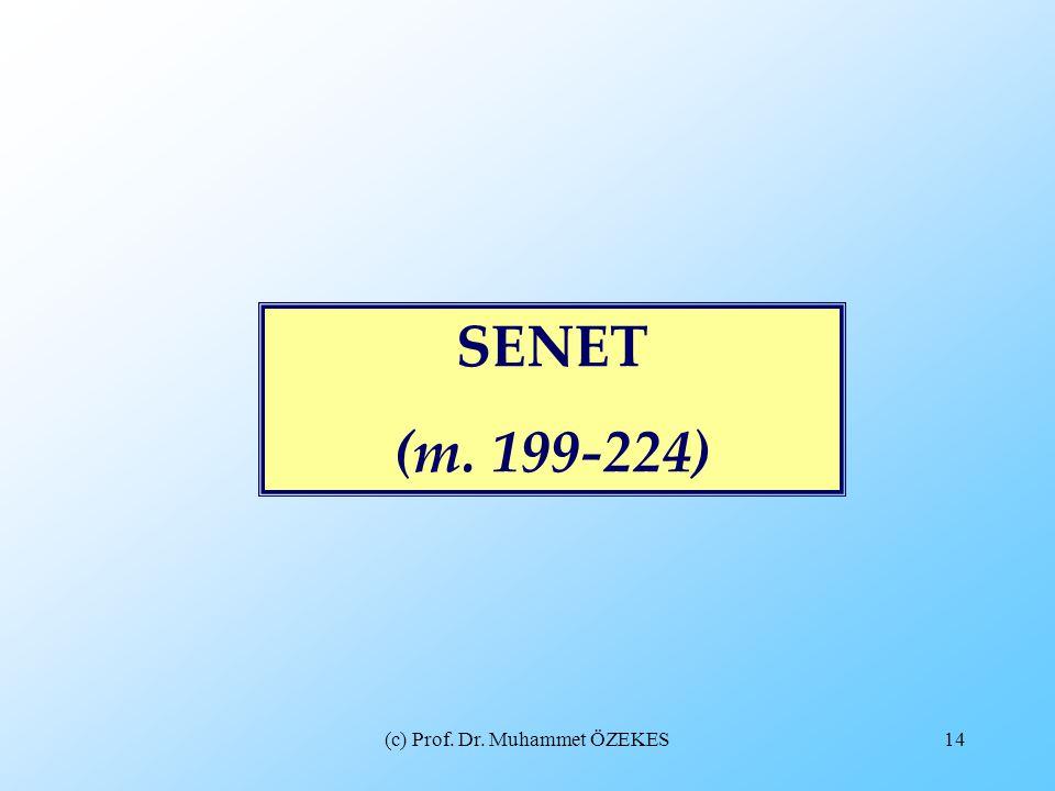 (c) Prof. Dr. Muhammet ÖZEKES14 SENET (m. 199-224)
