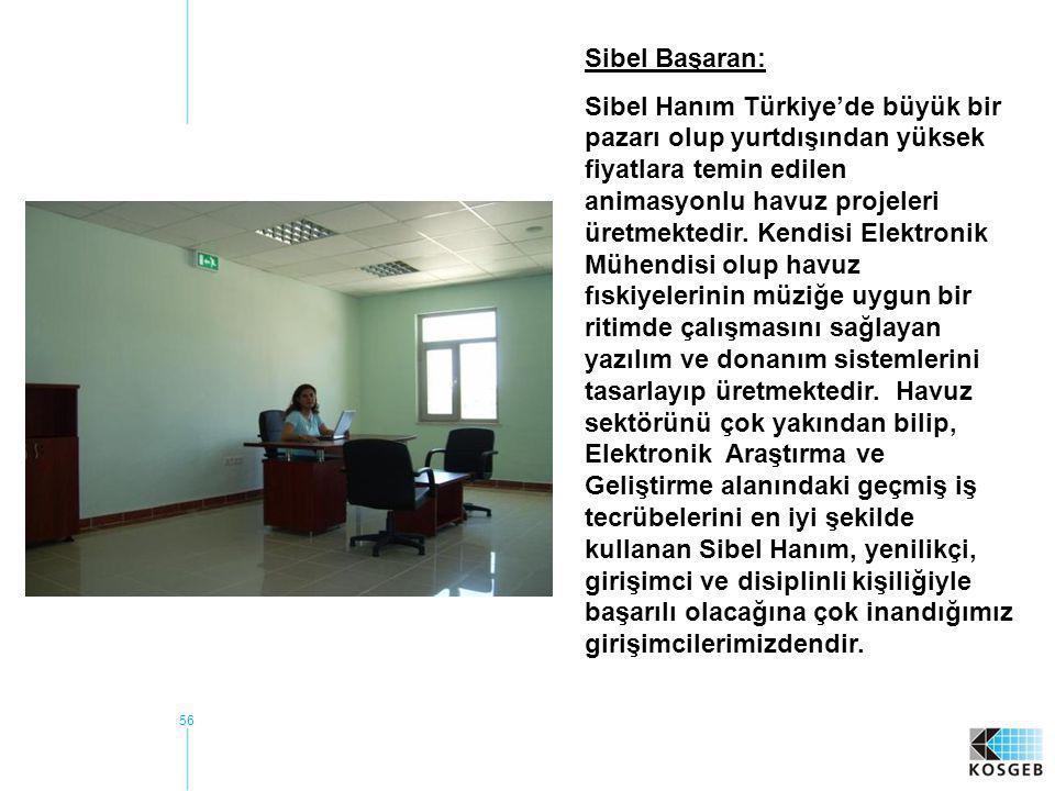 56 Sibel Başaran: Sibel Hanım Türkiye'de büyük bir pazarı olup yurtdışından yüksek fiyatlara temin edilen animasyonlu havuz projeleri üretmektedir. Ke