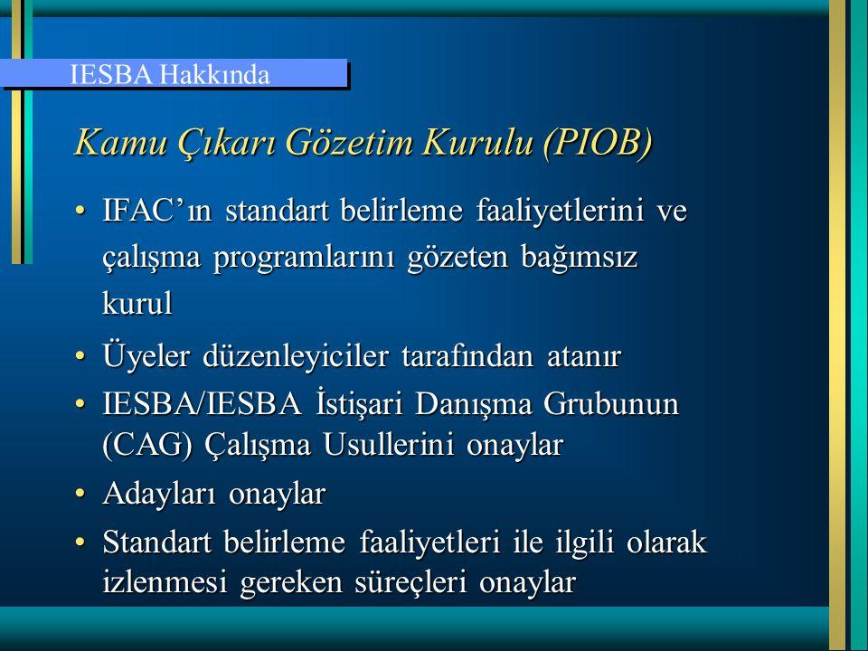 Uluslararası Muhasebeciler Federasyonu www.ifac.org Şubat 2006