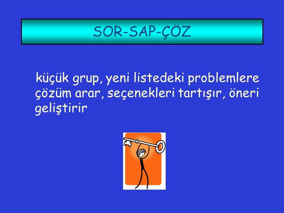 SOR-SAP-ÇÖZ küçük grup, yeni listedeki problemlere çözüm arar, seçenekleri tartışır, öneri geliştirir