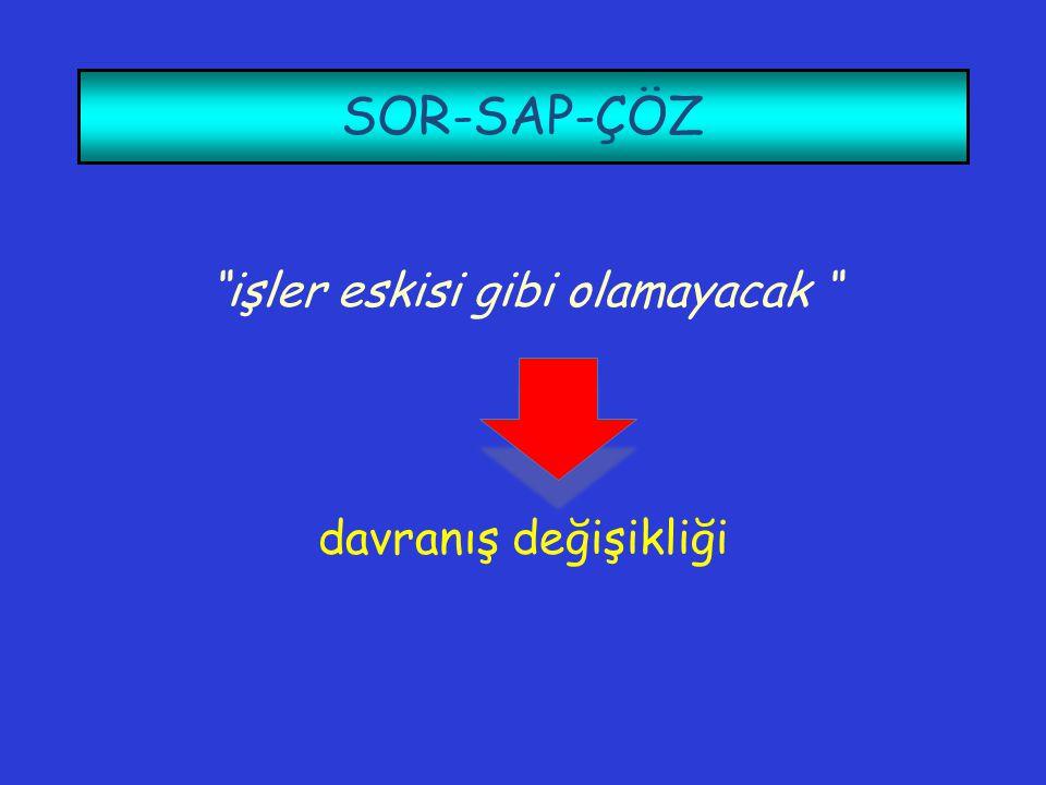 """SOR-SAP-ÇÖZ """"işler eskisi gibi olamayacak """" davranış değişikliği"""