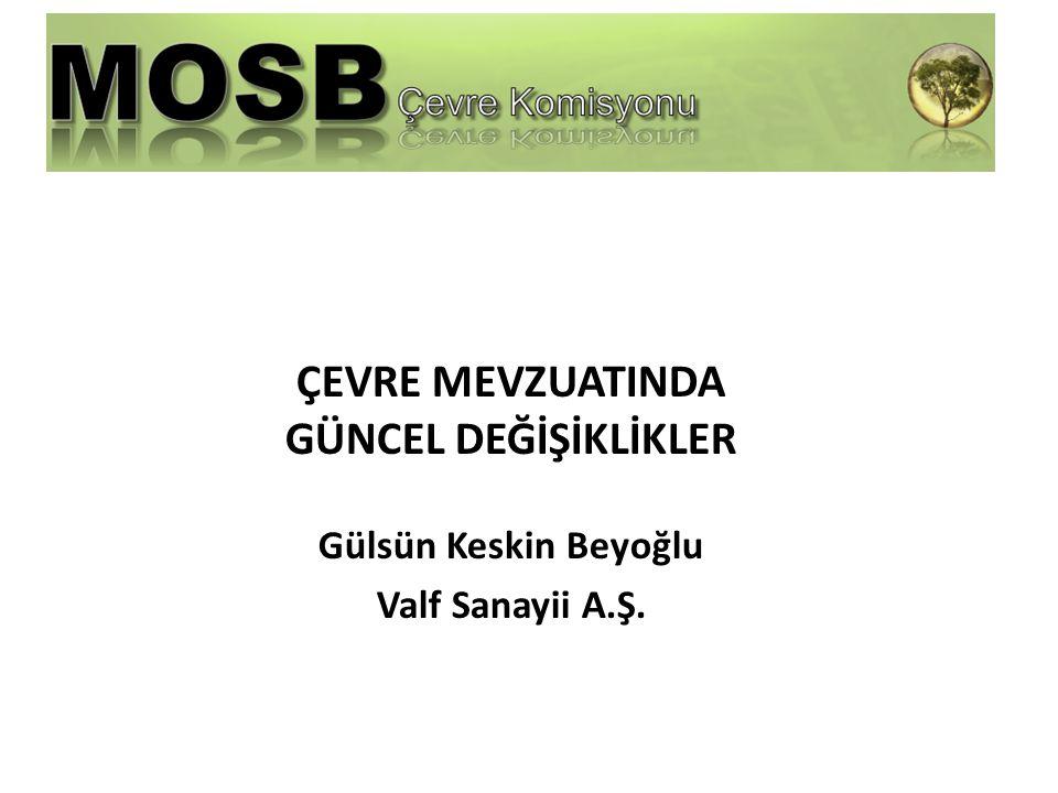 ÇEVRE MEVZUATINDA GÜNCEL DEĞİŞİKLİKLER Gülsün Keskin Beyoğlu Valf Sanayii A.Ş.