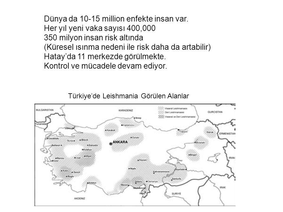 Türkiye'de Leishmania Görülen Alanlar Dünya da 10-15 million enfekte insan var. Her yıl yeni vaka sayısı 400,000 350 milyon insan risk altında (Kürese